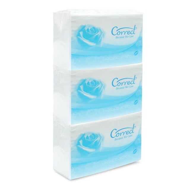 Correct Non-Seriese 2 ply Hand Towel Tissue 250 Sht/Pack