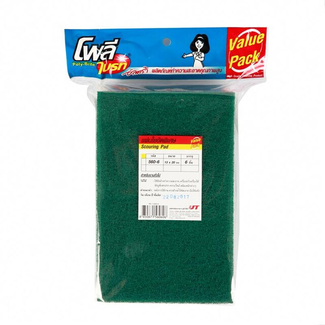 Scourer Pad (6/Pack) Poly-Brite 560-6