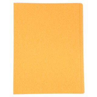 Baipo File Folder A4 Orange