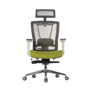 ERGOTREND ERGO-X-Green Executive Chair White-Green