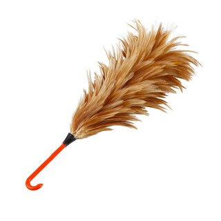 NCL Feather Duster