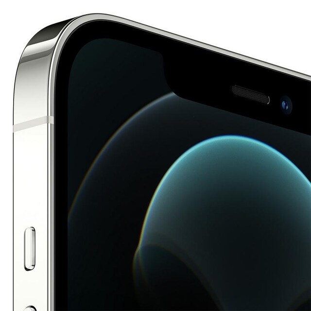 iPhone 12 Pro Max (256, Silver)